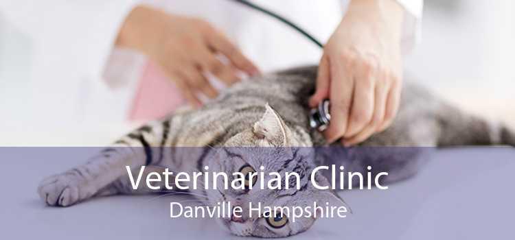 Veterinarian Clinic Danville Hampshire