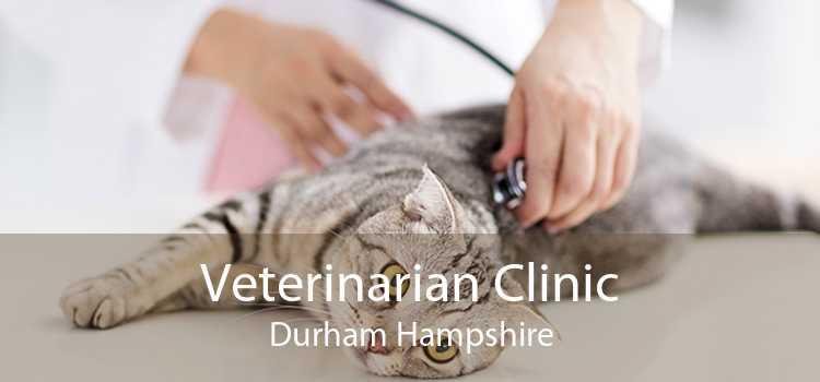 Veterinarian Clinic Durham Hampshire