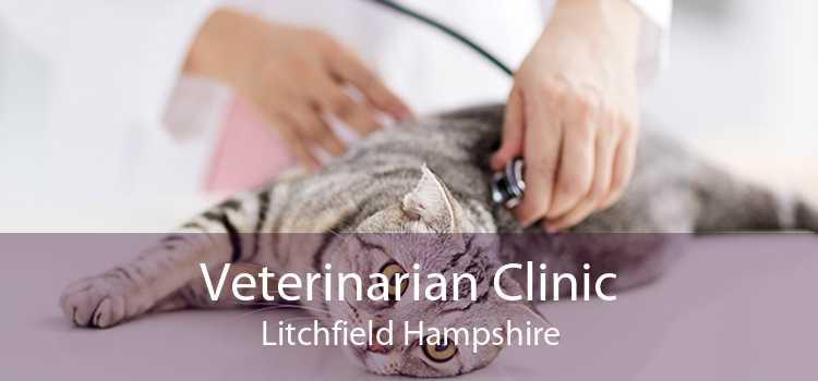 Veterinarian Clinic Litchfield Hampshire