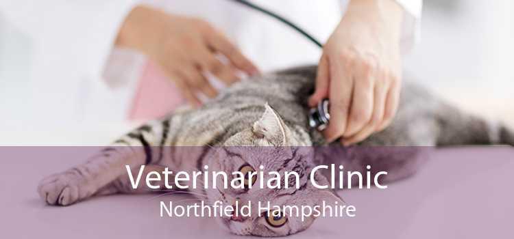 Veterinarian Clinic Northfield Hampshire