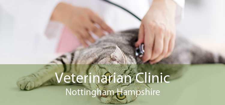 Veterinarian Clinic Nottingham Hampshire